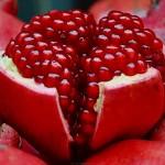 Cách chọn quả lựu đỏ ngon nhiều dưỡng chất